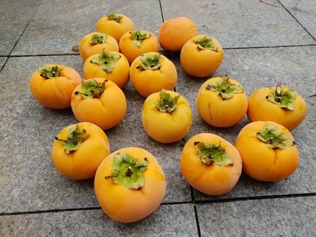 Kaki fruits Stockfoto