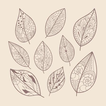 fall leaf: doodle leaves set hand drawn artwork