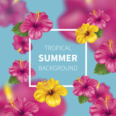 Summer background with beautiful blooming tropical flowers of pink and yellow hibiscus is also called Chinese Rose. Vector Illustration. 向量圖像
