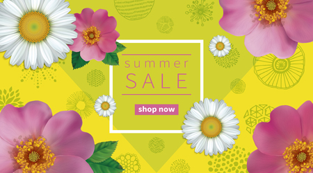 Summer sale background with flowers rose hips and chamomile. Abstract hand drawn circles texture. Illustration