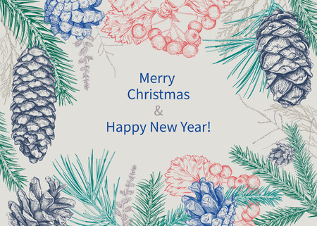 Christmas and New Year background with different branches and cones. Fir tree, cedar, pine, thuja, hawthorn.  Hand drawn sketch. Design for greeting cards, calendars, banners, posters, invitations