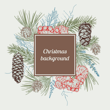 Christmas and New Year background with different branches and cones. Fir tree, cedar, pine, arborvitae, hawthorn. Hand drawn sketch. Design for greeting cards, calendars, banners, invitations Ilustração