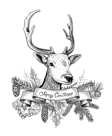 Christmas and New Year background with deer, ribbon, different branches, cones. Hand drawn sketch. Design for greeting cards calendars banners.  イラスト・ベクター素材