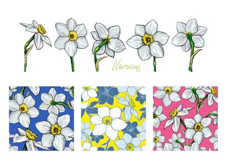 Set van bloemen Narcissus met drie verschillende naadloze patronen. Hand getrokken schets Sjabloon voor textiel bloemdessin.