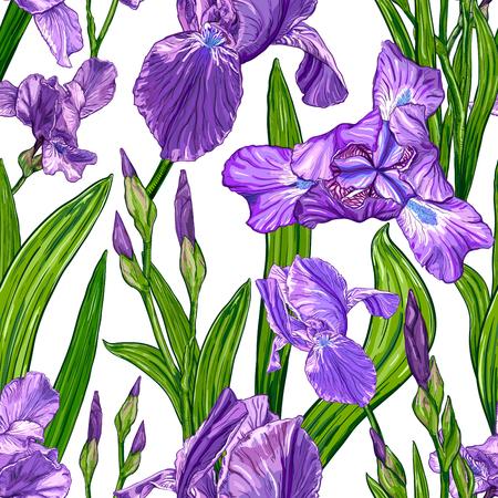 手描きのスケッチ、テキスタイルの花のデザインのためのテンプレートで白い背景にアイリスの花とボーダレスパターン。
