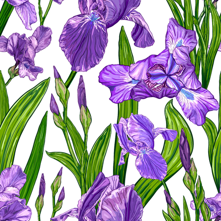 Borderless pattern with Iris flowers on a white background in Hand drawn sketch, Template for textile floral design.