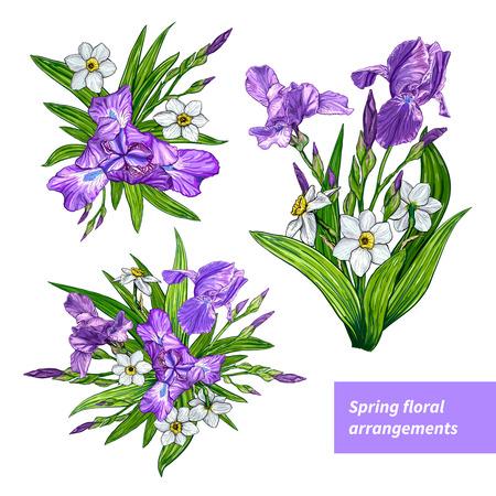 아이리스와 흰색 배경에 수 선화 꽃 봄 준비. 손으로 그린 스케치입니다. 서식 파일, 꽃 조성 디자인 요소입니다. 일러스트