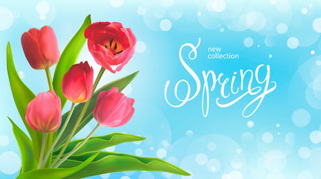 Beautiful Spring bouquet of red tulips on a blue background. Template for greeting card and banners on 8 March, Mother s Day, Birthday, Spring Sale. Vector illustration, EPS10 format. Vettoriali