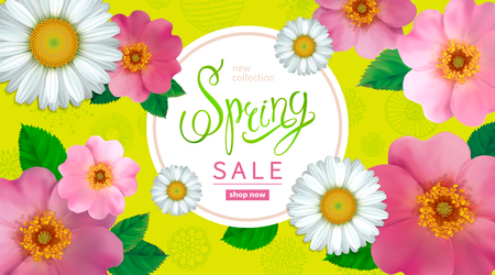 Spring sale background with flowers rose hips and chamomile, abstract hand drawn elements. Design for greeting cards, banners, calendars, posters, invitations.