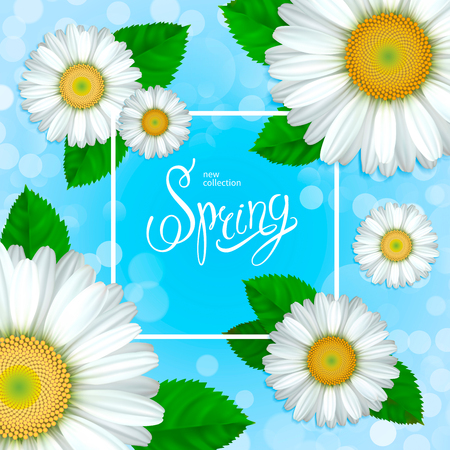 Spring collection. Flowers chamomile, green leaves and white frame on a blue background. Design for greeting cards, banners, calendars, posters, invitations, advertising, announcements of sales.