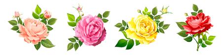 흰색 배경에 분리된 잎과 꽃봉오리가 있는 서로 다른 색의 장미꽃 4개 세트. 사랑스러운 꽃무늬 빈티지 디자인 요소입니다. 수채화 스타일의 벡터 일러스트 레이 션