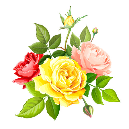 Beautiful bouquet flowers of red, gentle peach and yellow blooming roses with leaves and buds, isolated on a white background. Lovely floral design element. Vector illustration in watercolor style