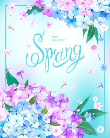 Beautiful floral background with blooming flowers of pink, lilac and light blue phloxes, green leaves. Inscription Spring in frame on pastel sky blue background. Vector illustration Stock fotó - 126583047