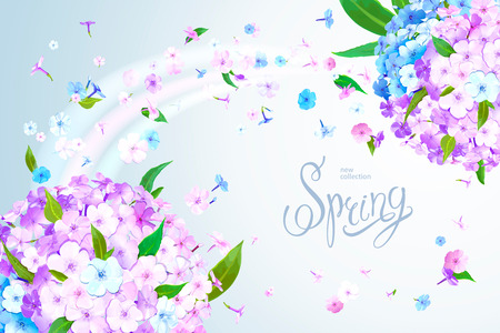 Beautiful floral background with blooming flowers of pink, lilac and light blue phloxes and green leaves. Inscription Spring on pastel sky blue background. Warm breeze carries tender flowers Archivio Fotografico - 126478128