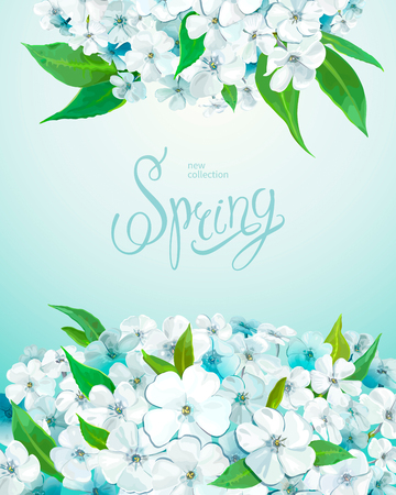 Beautiful floral background with blooming flowers of white and light-blue phloxes and green leaves. Inscription Spring on a background of turquoise blue color. Vector illustration Foto de archivo - 126478130
