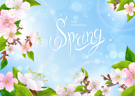 Beautiful spring background. Light pink flowers on branches with green leaves, buds in bloom on a blue sky background. Inscription Spring in the center. Vector illustration