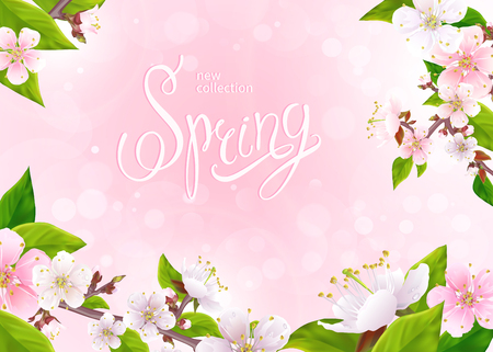 Beautiful spring background. Lovely flowers on branches with green leaves, buds in bloom on a light pink background. Inscription Spring in the center. Vector illustration