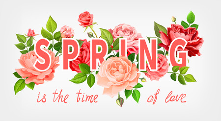 Slogan Spring is the time of love. Beautiful flowers of blooming roses red, pink and living coral colors, leaves and buds on a light-grey background. Floral design elements. Vector illustration