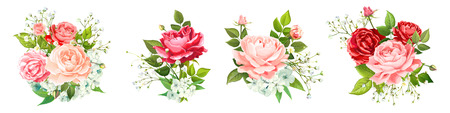 Set of vector floral bouquets. Blooming flowers of red, pink, gentle peach Roses, light Phloxes, tender Gypsophila, buds, greenery isolated on a white background. Designer elements Wedding invite card  イラスト・ベクター素材