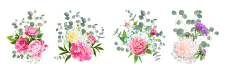 Set of vector bouquets. Blooming flowers of pink Roses, Paeonies, light-blue Phloxes, violet Aster and tender Gypsophila among of Eucalyptus leaves isolated on a white background. Wedding Design Illustration