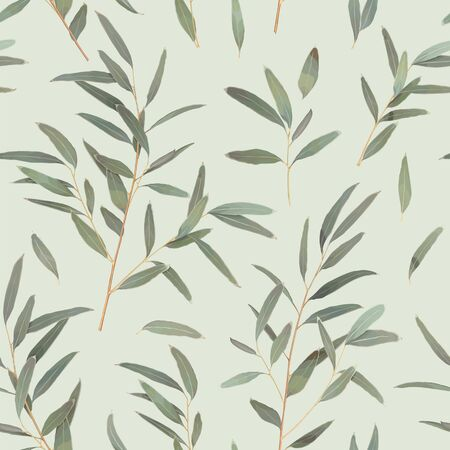 Seamless pattern with different branches of Eucalyptus radiata on a light green background. Vector illustration of greenery, foliage and natural leaves. Template for floral textile design