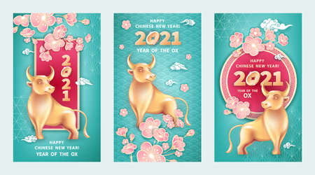 Set of three greeting cards for 2021 Chinese New Year. Metal Ox is a symbol year. Golden bull, coins, flowers pink spring sakura on turquoise blue background. The wish of wealth, monetary luck