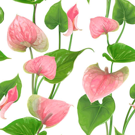 Floral seamless pattern with Anthurium flowers and leaves on a white background. Bright green-pink buds. Vector botanical illustration. Exotic tropical elements for textile design