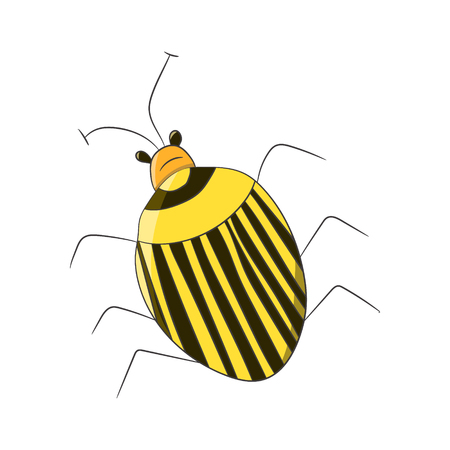 Bright striped yellow beetle in the style of children-s drawings. Vector illustration. Drawing by hand. Illustration