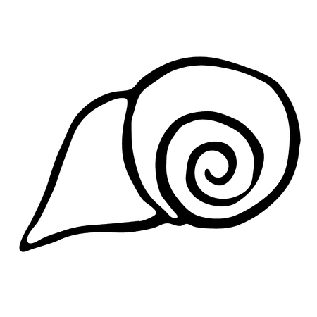 Sea shell. vector illustration. Drawing by hand. Illustration