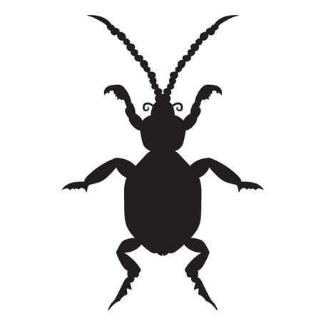 Black silhouette of a beetle on a white background. vector illustration. Hand drawing.