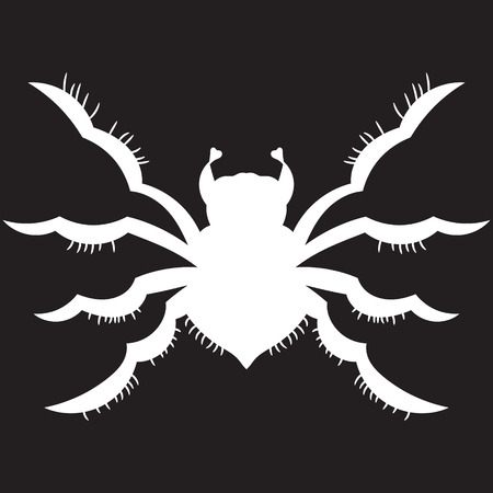White spider on a black background. vector illustration. Drawing by hand.