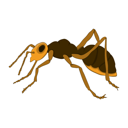 Cartoon ant on a white background. Vector illustration. Hand drawing