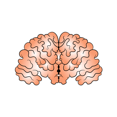 Picture of the brain drawn by hand. Vector illustration. 일러스트