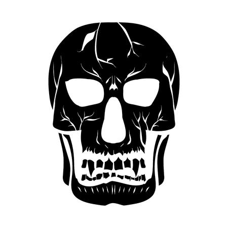 Contour silhouette of the skull. Illustration