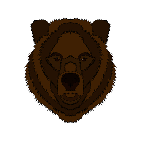 Illustration of a bear's head. Vector graphics.