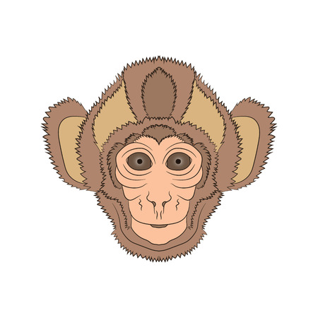 Image of the head of a monkey. Vector graphics Hand drawing