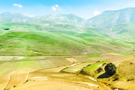 castelluccio di norcia: Cultivated fields rounded by Monti Sibillini in Castelluccio di Norcia, Italy