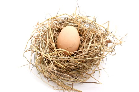 one egg in nest isolated on white Stock Photo - 4134073