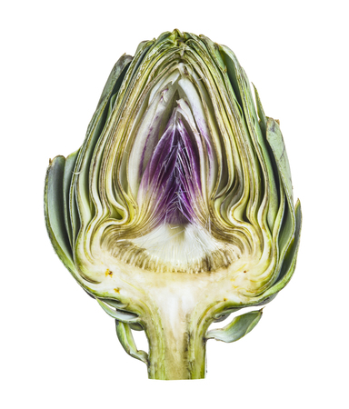 A half fresh organic Artichoke isolated on white background. Close-up. Object.