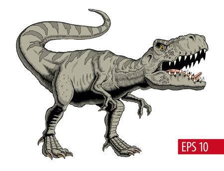 Dinosaure Tyrannosaurus rex ou t rex isolé sur blanc. Illustration vectorielle de style comique. Vecteurs