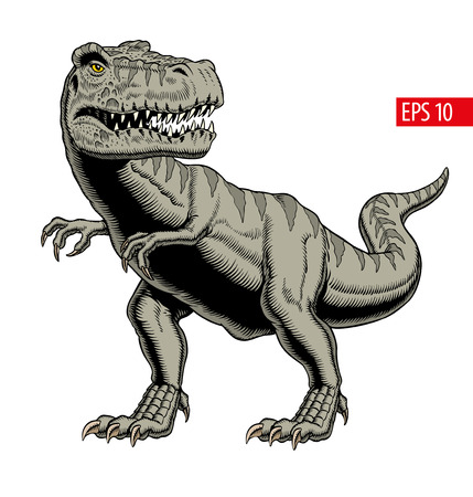 Tyrannosaurus rex or t rex dinosaur isolated on white. Comic style vector illustration. Çizim