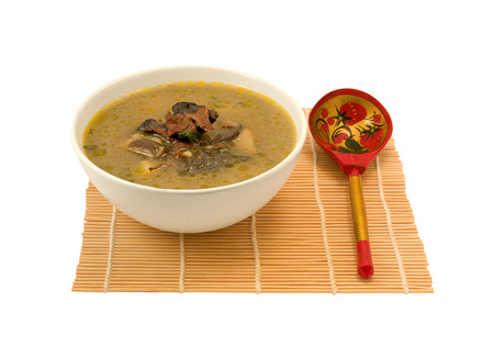 delicious mushroom soup made with wild mushrooms photo