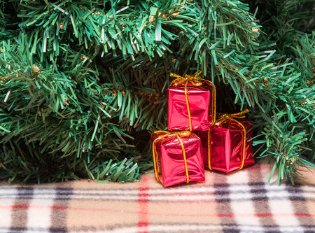 miracle tree: red gifts are under the Christmas tree on the rug and waiting for the holiday