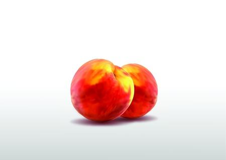 Two ripe peaches Stock Vector - 20386829