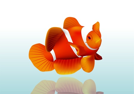clown fish: Orange fish Illustration
