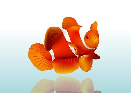 Pescado Orange