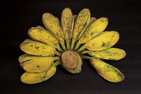 rocky: Kluay Hin Rocky Banana