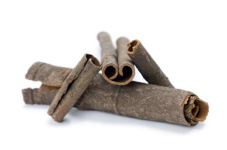 cinnamon bark: cinnamon bark arranged against a white background