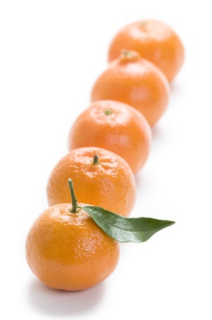 clementine oranges in a row isolated on a white background Stock Photo - 11955236