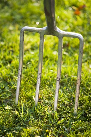 prongs: garden fork in a lawn close up Stock Photo